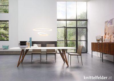Knittelfelder-Walter_Knoll-Esszimmer-13
